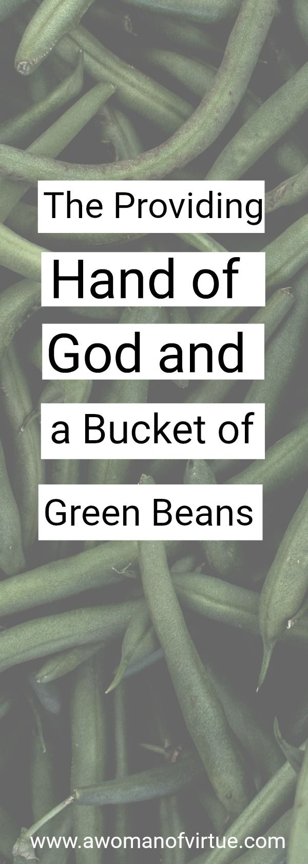 Turns out I'm pretty good at picking green beans, I thought to myself and stood to scoot the bucket beneath me forward. ..