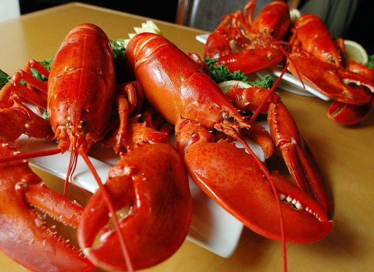 Lobsters At The Game? You Bet! Don't want To Cook Them! NO Problem! We'll Shipped Them Fresh Steamed For You! Sure ,You Take The Credit!