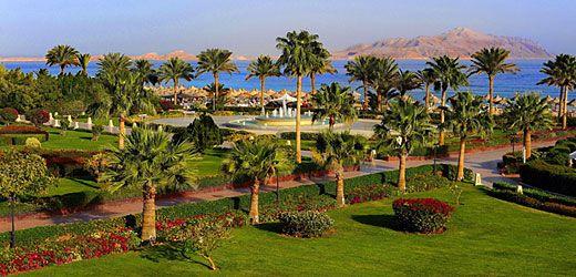 Baron Resort ligger i Ras Nasrani område, mellem lufthavnen og Sharks Bay.