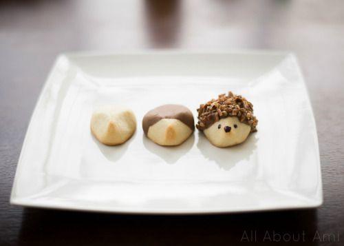 Chocolate pecan butter cookies