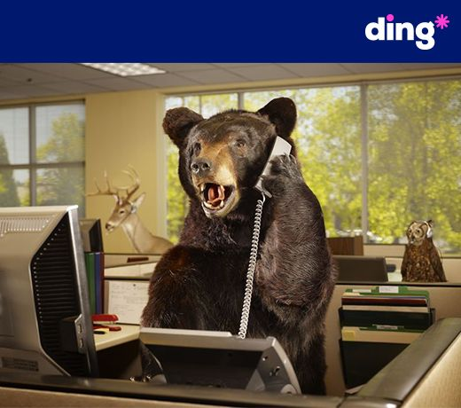 Speak louder please, I've got some fur in my ears! Send a top-up to hear the voice of someone special!  #dinganimals  https://www.ding.com/topup