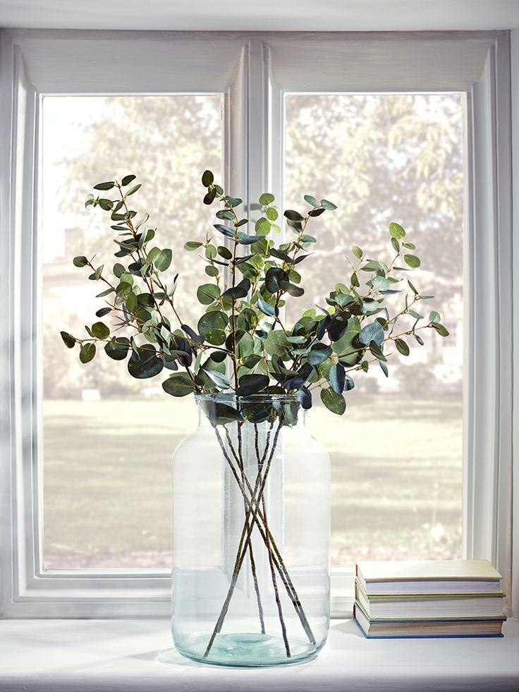 Best 25 eucalyptus leaves ideas on pinterest eucalyptus - Plantas secas decoracion ...