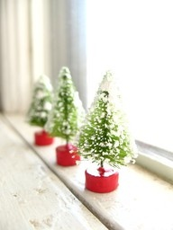 Mini trees - the perfect window dressing.