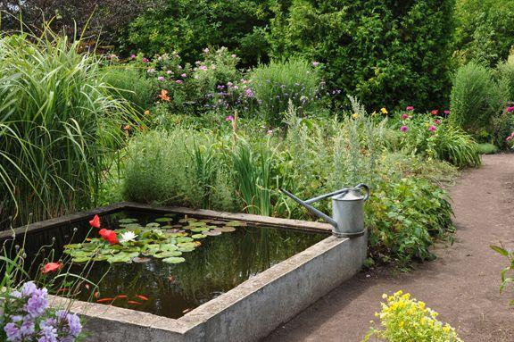 Três cães em um jardim: Idéias Pin: Pequenos Recursos Hídricos e Jardim Lagoas