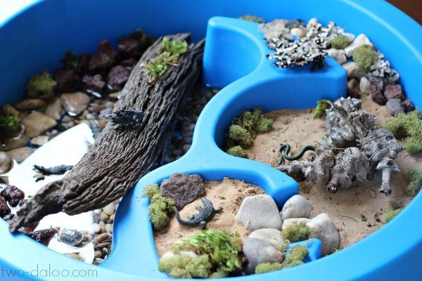 Create this awesome small world with Safari Ltd.'s Alligators Alive TOOB and create an environment perfect for imaginative play, sensory play, language stimulation, and FUN!