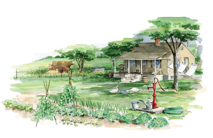 Homestead Water Sources and Options