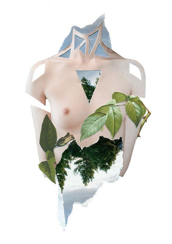 HANDMADE COLLAGES SERIE IV [SKIN] #collage #handmade #nature #botanical #human #body #portrait #RocioMontoya #SKIN #plants #landscape