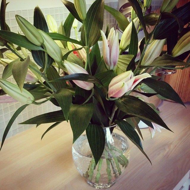 #hjemme #sommer #friskeblomster #athome #lilys #instaflowers