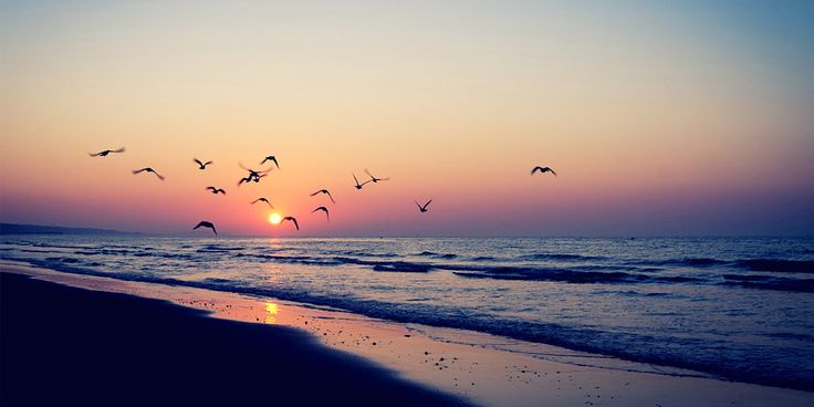 Sunset Beach Twitter Cover & Twitter Background | TwitrCovers