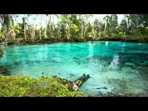 MÚSICA PARA ALIVIAR EL ESTRES LA ANSIEDAD 2014 - MÚSICA PARA RELAJARSE, DORMIR RELAXATIO MARIO - YouTube