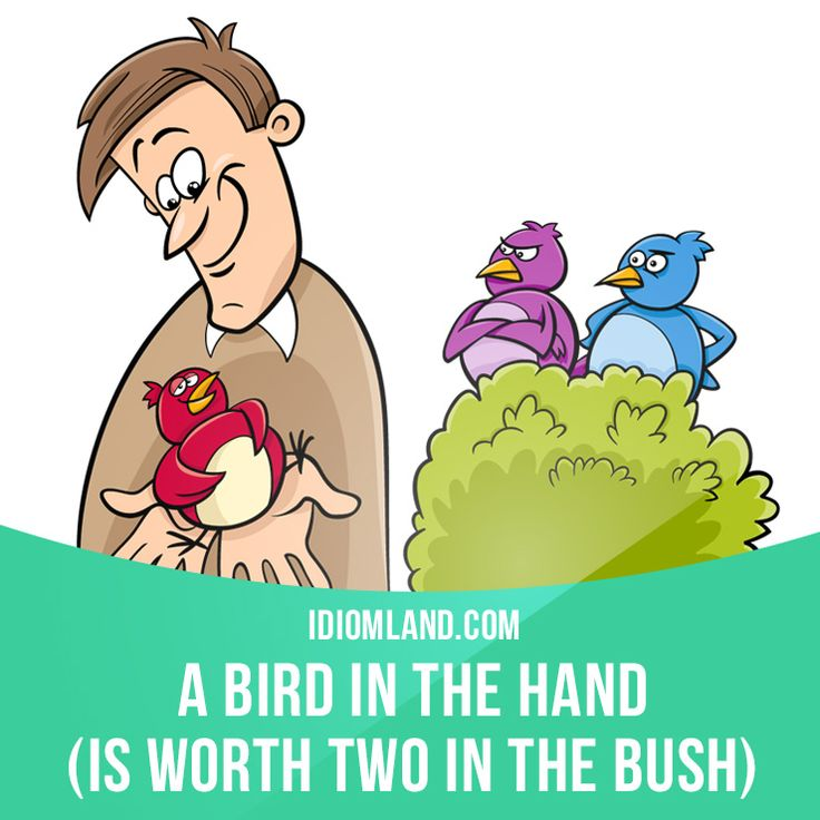 a bird in hand is worth A bird in the hand is worth two in the bush a chain is only as strong as its weakest link a dog is a man's best friend a fool and his money are soon parted.
