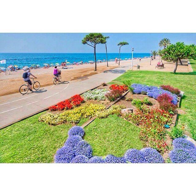 Instagram picutre by @mickeymotos: ENG]  Pineda de Mar is @vilesflorides to enjoy the sea beach mountains gardens ... you'll fall in love !!  [CAT] Pineda de Mar és @vilesflorides on gaudir del mar la platja muntanya jardins...t'enamorarà!! [RUS] Pineda de Mar @vilesflorides чтобы насладиться море пляж горы сады ... вы влюбляетесь!!  #MickeyMotos #rent #rentshop #rental #bike #bicycle #motorbike #scooter #ebike #electricbike #велосипед #мотоцикл #аренда #spring #family #happy #beach #sun…