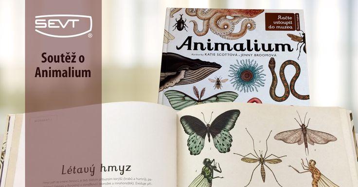 Jedna z nejzajímavějších knižních novinek na podzim 2017. Račte vstoupit do muzea, které má otevřeno 365 dní v roce. S touto knihou prozkoumáte rozmanité biotopy planety Země. A co víc? Dozvíte se, jak se živočišstvo vyvíjelo, jak vypadají zvířecí útroby, a další zajímavosti.
