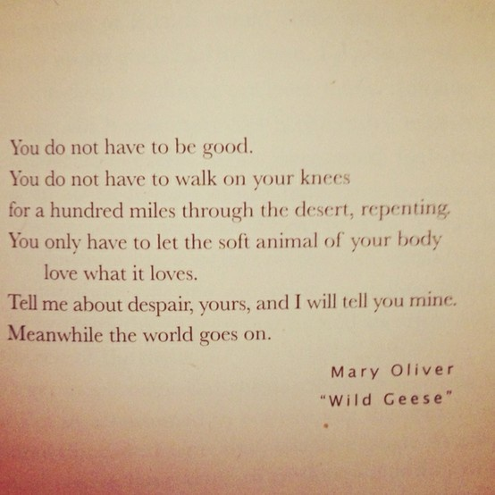 Mary Oliver quote via www.motleymama.com
