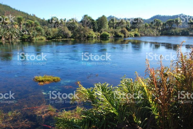 Te Waikoropupu Springs, Takaka, Golden Bay, New Zealand royalty-free stock photo