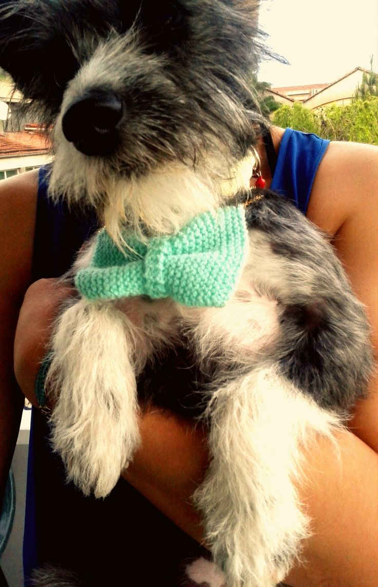 Byron like a true lord Handmade knitted bow necklace