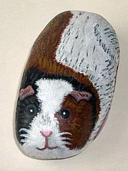 Painted rock guinea pig