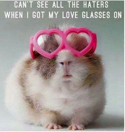 "Love this!! ""Can't see all the haters with my love glasses on!"""