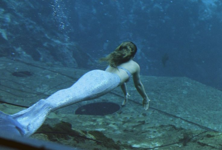 Here are a few more fascinating facts about the sirens of the sea. Description from weeklyworldnews.com. I searched for this on bing.com/images