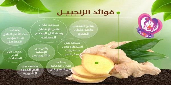 Pin By Tafle Hawaa On Health Ginger Benefits Health And Nutrition Childrens Health