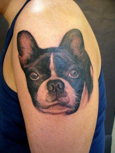 78 images about the blissful dog tattoos with dogs on pinterest boston terrier tattoo. Black Bedroom Furniture Sets. Home Design Ideas