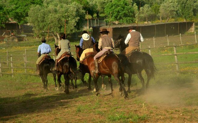 #Maremma #tuscany Butteri(Italian cowboys)