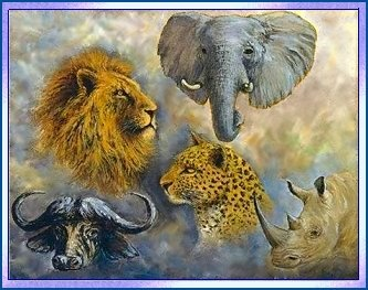"""The """"Big 5"""" refers to the great wild beasts of Africa - all of which can be found in South Africa: Lion, Elephant, Leopard, Rhino and Buffalo"""