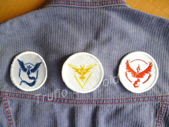 Pokemon Team Logo  iron-on badge/patch by Trufio on Etsy