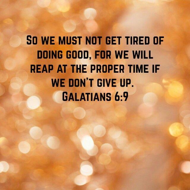 Galatians 6 : 9 HCSB