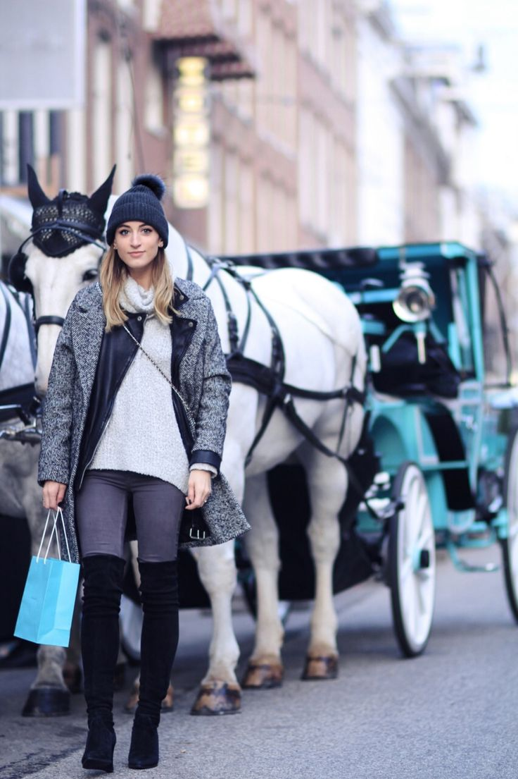 AN AFTERNOON WITH TIFFANY AND CO: HORSE CARRIAGE RIDE