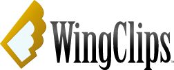 Now you can view inspirational movie clips from many of your favorite films. These WingClips™ can also be downloaded to use in your school, church or other organization.