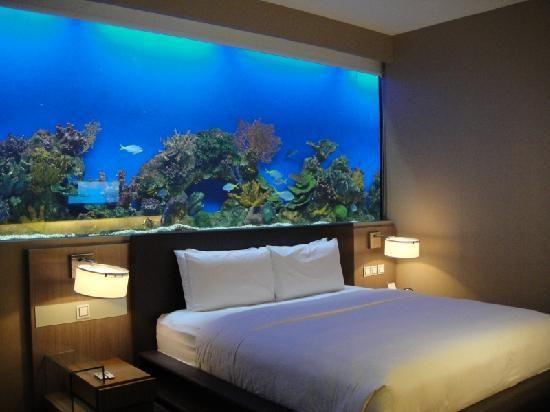 Aquário decorativo embutido em parede de quarto de casal