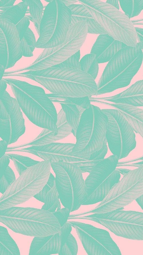 mint and pink wallpaper - photo #19