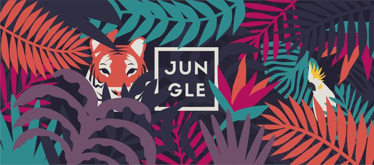 Jungle_illustration                                                                                                                                                                                 Plus