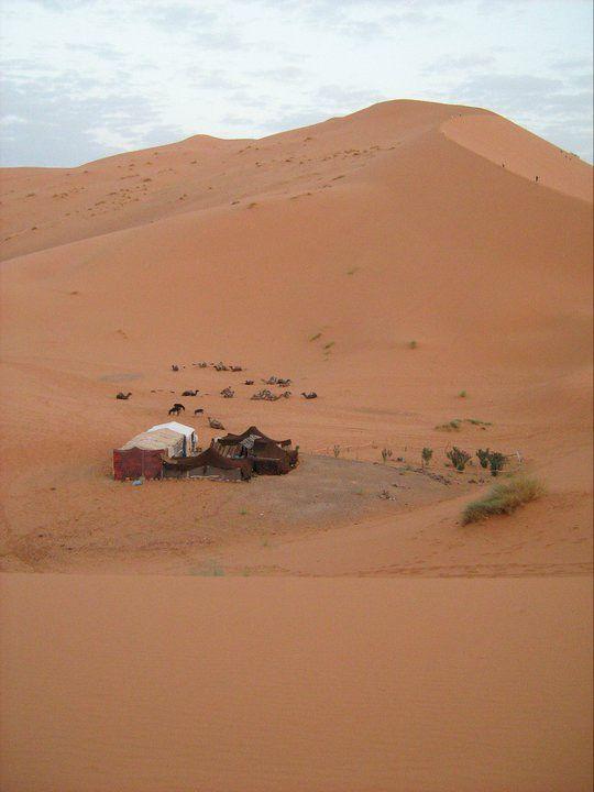 Touareg - Sahara desert, Morocco