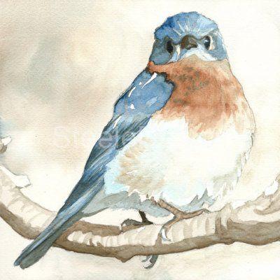 Spring Thaw - Watercolor  bluebird - cute facial expression
