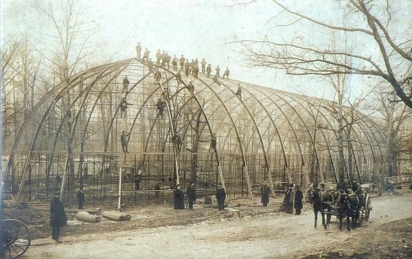 The Big Bird Cage: Where The Saint Louis Zoo Took Flight After The 1904 World's Fair   St. Louis Public Radio