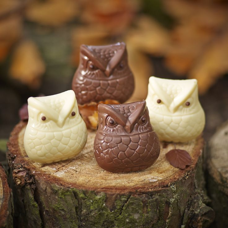 A collection of sweet feathered friends, these four Snowy and Tawny owls are handmade from milk and white chocolate.