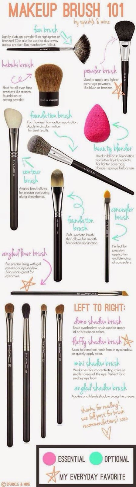 Chantel Bernal Beauty: Makeup Brush 101
