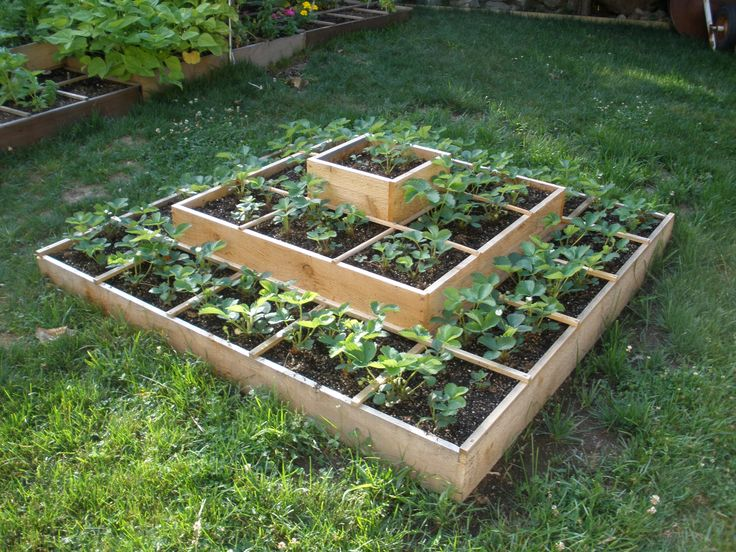 12 Best Ideas About Strawberry Beds On Pinterest Gardens Raised Beds And Cement