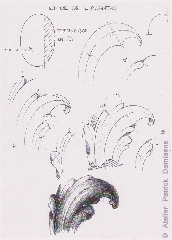 acanthus+leaf+5.jpg 736×1,024 pixels