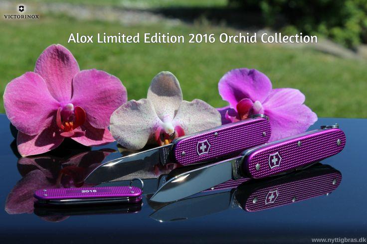 Victorinox Alox Limited Edition 2016 Orchid Collection Her har vi så samlet de 3 lommeknive i dette års limited edition, og de ser bare hamrende godt ud! Kvaliteten er ekstremt høj og der er tale om et gudesmukt design.  Kig forbi: www.nyttigbras.dk  #worlderunners #jylland #danmark #victorinox #motion #træning #løb #madlavning #lommeknive #natur #kbh #københavn #fyn #køkkengrej #mad #geocaching #spejder #sundhed #værktøj #inspiration #jagt #fritid #hobby #cph #camping #outdoor
