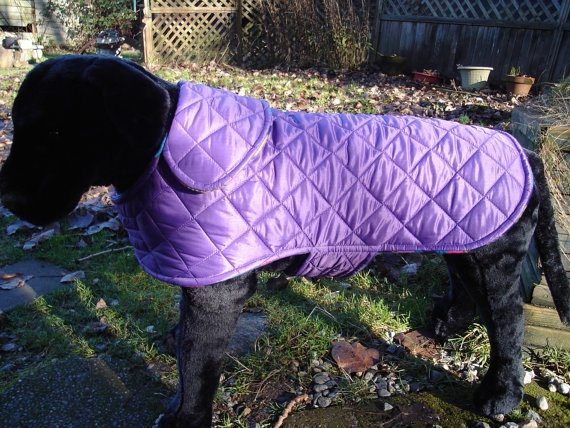 Purple Puffer and Multicolor Fleece Dog Coat by KozyCanines
