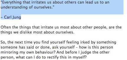 Everything that irritates us about others can lead us to an understanding of ourselves - Carl Jung