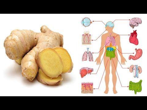 Mangia zenzero ogni giorno per un mese e guarda cosa succede al tuo organismo - YouTube