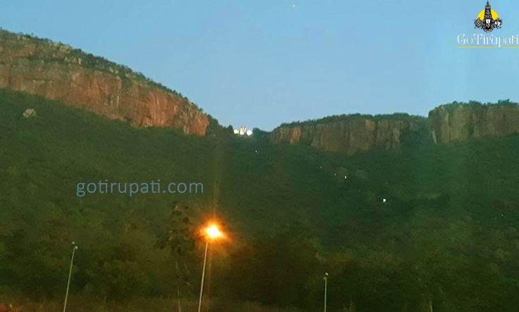 Tirupati Darshan details