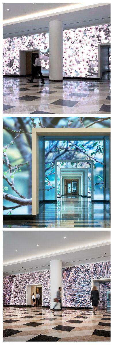 Компания ESI создала особый дизайн для фойе Terrell Place в Вашингтоне. 1700 квадратных футов стен вестибюля были превращены в интерактивную светодиодную установку. #светодиоды #подсветка #светодизайн #светодиоднаяустановка #интерактивнаяустановка #светодиодная #дизайн #светодиодныедисплеи