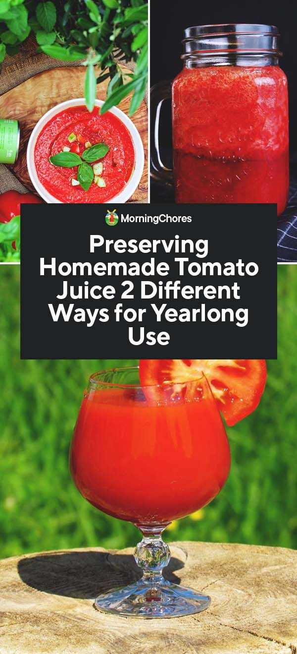 Tomato juice for the winter - recipes for very tasty tomato juice at home 93