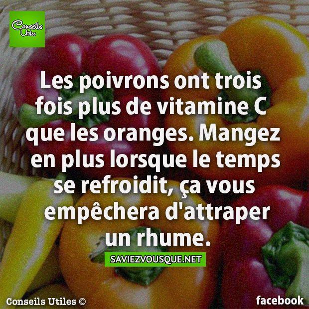 Les poivrons ont trois fois plus de vitamine C que les oranges. Mangez en plus lorsque le temps se refroidit, ça vous empêchera d'attraper un rhume.   Saviez Vous Que?