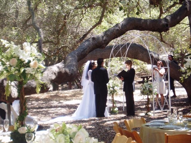 1000 Images About Louis Stelzer County Park Weddings On Pinterest